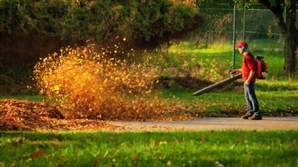 Man blowing autumn leaves away with a leaf blower