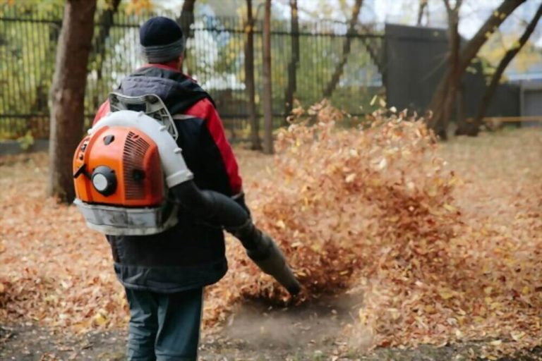 Why are Leaf Blowers Banned