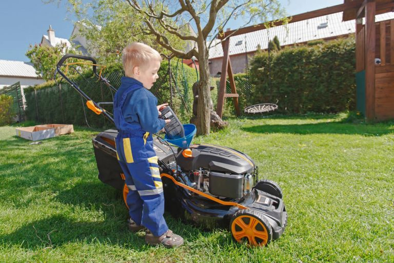 Difference between Lawn mower oil and Car oil
