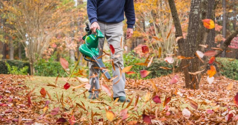 How much Electricity does a Leaf Blower Use