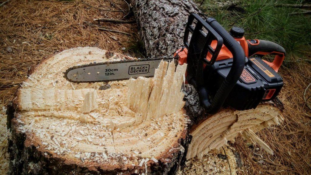 best arborist chainsaw