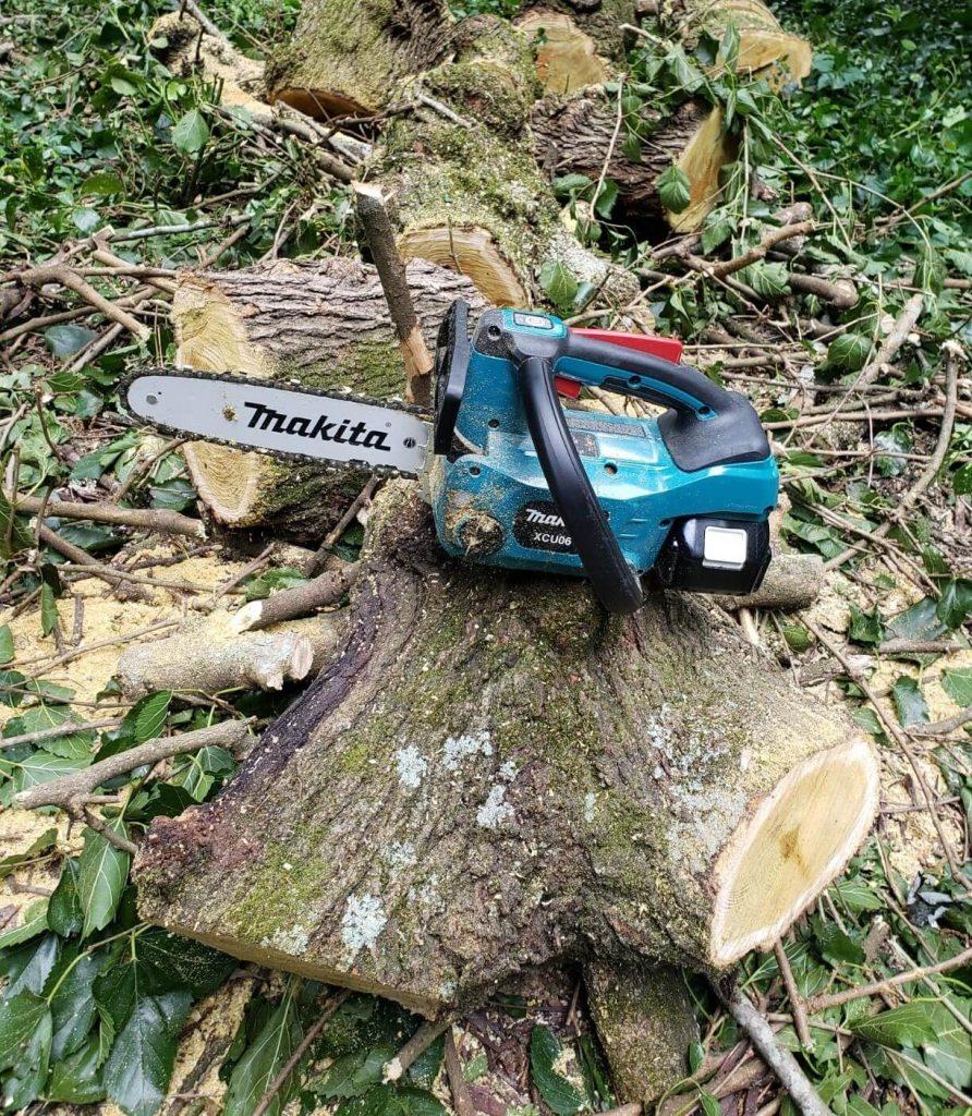 best top handle arborist chainsaw