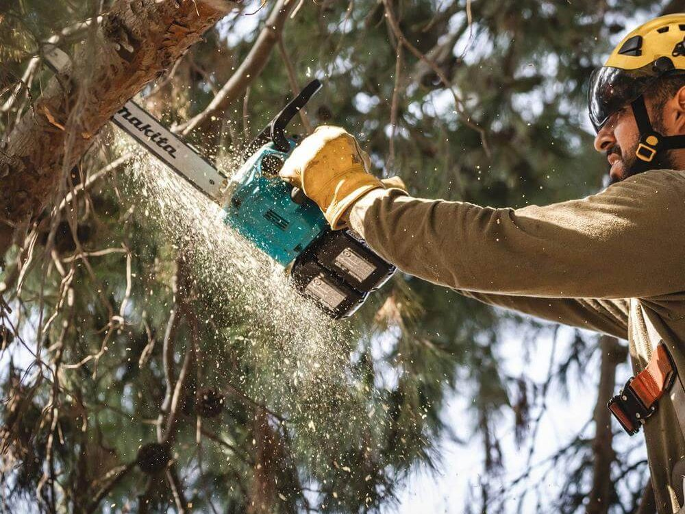 Professional top handle chainsaw